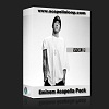 国外干声说唱/Rap Eminem Acapella Pack Vol 1